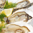 Oysters with lemon and dill - Stock Photo
