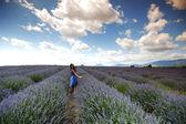 žena na levandule pole — Stock fotografie