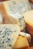 Various types of cheese composition — Stock Photo
