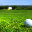 Golf-ball on course — 图库照片