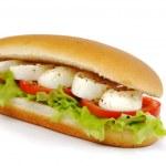 Sandwich with mozzarella tomato and salad — Stock Photo
