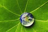 The world in a drop of water — Stock Photo