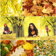 Woman in autumn park — Stock Photo #29739615