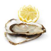 Beyaz üzerine limon ve istiridye — Stok fotoğraf