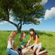 Girlfriends on picnic — Stock Photo #30048365