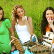 Girlfriends on picnic — Stock Photo #30048389