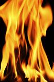 Oheň tapeta — Stock fotografie