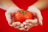 Tomate en manos de mujer — Foto de Stock