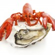 Stock Photo: Lobster and oyster