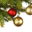 Stock Photo: Christmas decoration on fir