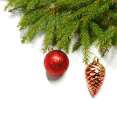Christmas balls and spruce branch — Stock Photo