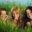 Girlfriends on grass — Stock Photo #33752397