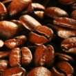 Coffee beans — Stock Photo #33753529