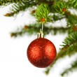 Red christmas ball on fir — Stock Photo #34296647