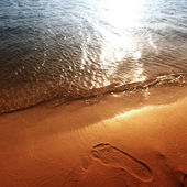 Ocean footprints on sand near water — Stock Photo