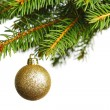 Christmas decoration on fir branch — 图库照片