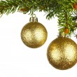 Christmas decoration on fir branch — Foto de Stock