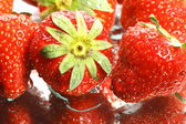 Strawberry — Fotografia Stock