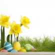 Easter eggs and daffodils — Stock Photo #43629821