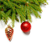 Baubles on fir branch — Stockfoto