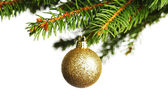 Decorative ball on fir branch — Stock Photo