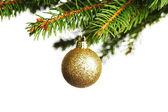 Decorative ball on fir branch — Stock Photo