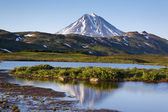Kamchatka. Vilyuchinsky volcano — Stock Photo