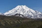 Ichinsky Volcano on Kamchatka Peninsula — Stok fotoğraf