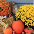 Stock Photo: Thanksgiving Decoration