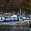 Petty Harbor Newfoundland — Stock Photo