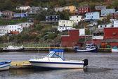 Village of Petty Harbor Newfoundland. — Stock Photo