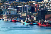 St. John?s Newfoundland Downtown and Harbor — Стоковое фото