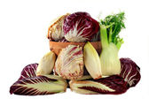 Fennel and Radicchio ingredients for gourmet salad — Stock Photo