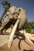 Statue of an African Elephant — Stock Photo