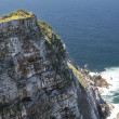 Cape Point Cliff — 图库照片 #14368693