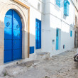 Houses of Sidi Bou Said — Stock Photo #15753913