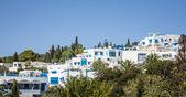 Houses of Sidi Bou Said — Stock Photo