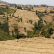 Hilly landscapes of Ethiopia — Stock Photo