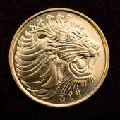 Face of a Lion on a coin — Stock Photo