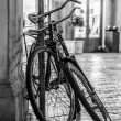 Two old bikes — Stock Photo #31977459