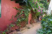 Historical buildings on Goree Island — Stockfoto
