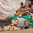 Mbour fish market — Stock Photo #50717793