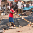 Mbour fish market — Stock Photo #50717799