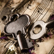 Vintage still life with old keys — Stock Photo #27148281