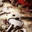 Vintage still life with old keys — Stock Photo #27148289