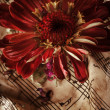 Vintage music notes with red flower — Foto Stock