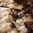 Old music notes with dry roses — Stock Photo