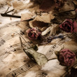 Old music notes with dry roses — Stock Photo #27148343