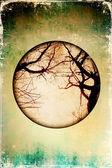 Grunge arka plan fotoğraf kuru ağaçlar ile — Stok fotoğraf