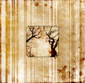 Grunge core with photo of dry trees — Stock Photo